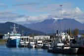 Fishing harbour in Alaska with glacier and mountains — Stock Photo