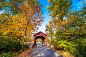 Maryland Covered Bridge in Autumn — Stock Photo