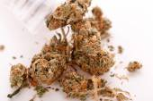 Close-up gedroogd marihuana verlaat op de tafel — Stockfoto