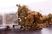Nära håll torkade Marijuana bladen på bordet — Stockfoto