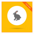 Grey hare icon — Stock Vector #78302592