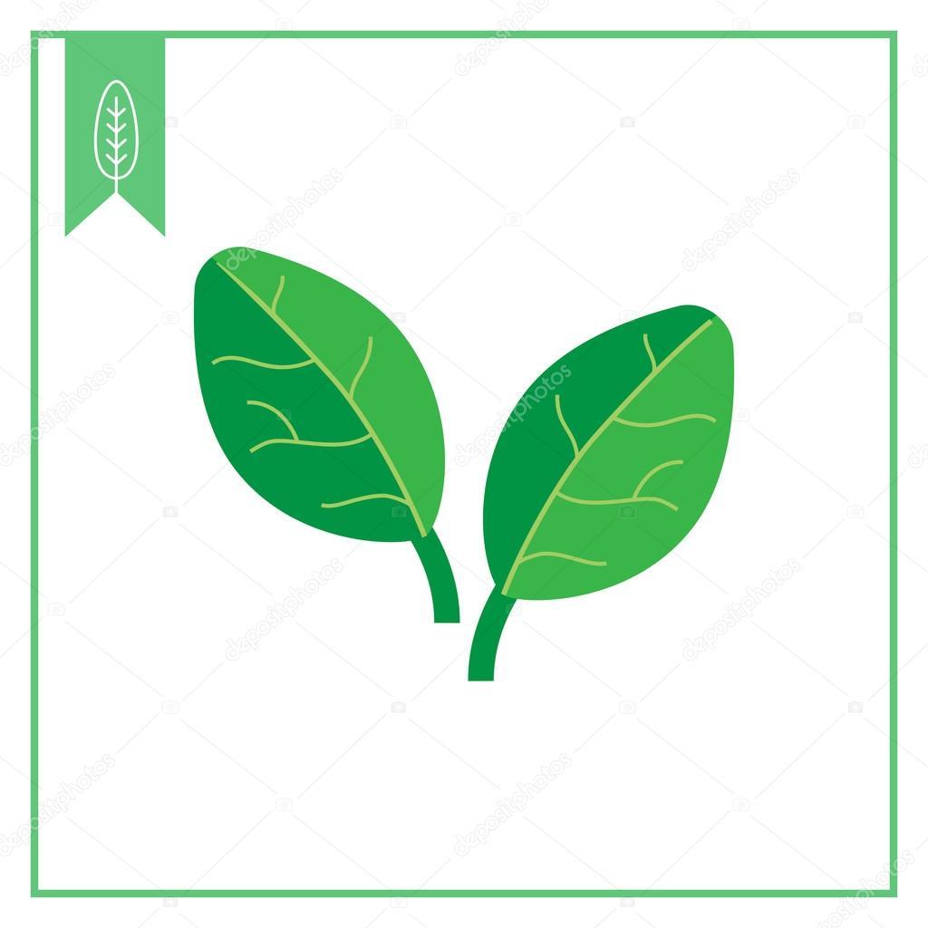 시금치 잎 아이콘 — 스톡 벡터 #89086996