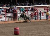 Bullriding on a grey bucking bull at calagary stampede — Stock Photo