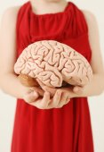 Woman holding Brain Model — Stock Photo