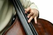 Double bass player — Stock Photo