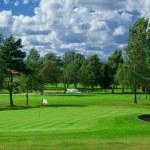 Постер, плакат: Golf course in Sweden