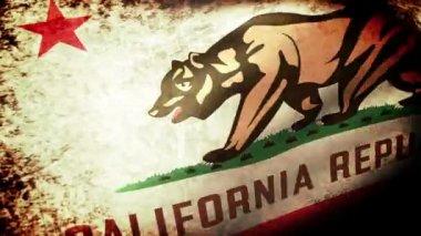 California State  flag waving — Stock Video