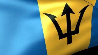 Barbados  flag waving — Stock Video