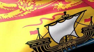 New Brunswick flag waving — Stock Video