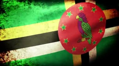 Dominica flag waving — Stock Video