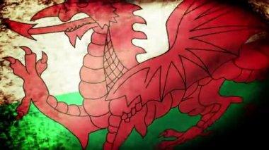 Drapeau du pays de Galles — Vidéo
