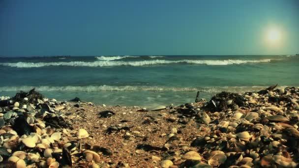 Shore with sea breaking waves — Vídeo de stock