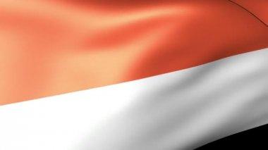 Monaco flag waving — Stock Video