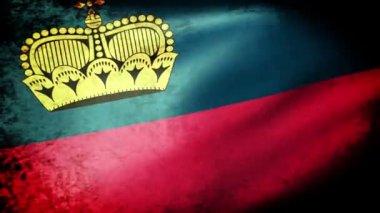 Lihtenştayn bayrağı sallayarak — Stok video