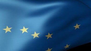 Alaska flag waving — Stock Video