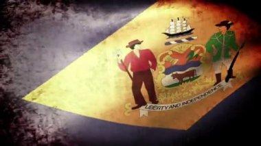 Delaware state  flag waving — Stok video