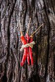 Piments rouges secs — Photo