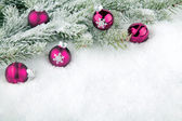 Fir branch with pink christmas baubles — Stock Photo