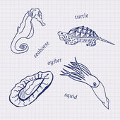 Drawings in their notebooks in a cage of marine animals and seafood scallop, sea horse, squid, oysters — Stock Vector