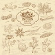 Set of spices and herbs cuisines of India on old paper in vintage style. Vector — Stock Vector #76375899