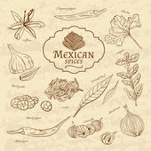 Set of spices and herbs cuisines of the world Latin America Mexico on old paper in vintage style. Vector  — Stock Vector