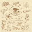 Set of spices and herbs cuisines Turkey on old paper in vintage style.  illustration — Stock Vector #76384967