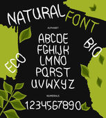 Hand drawn vector alphabet with numbers for the design of green eco products, the use of labels and logos natural food products. Vector — ストックベクタ