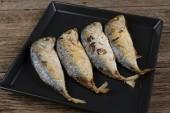 New mackerel fry — Stock Photo