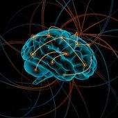 Brain illustration — Stock Photo