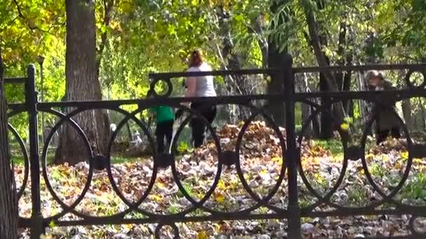 Chica jardinero rastrillo árbol de arce de otoño seco. Perm, Rusia, de septiembre de 2015 — Vídeo de stock