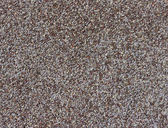 Poppy grains — Stock Photo