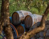 Ensemble de tonneaux presentes dans une propriete viticole en Provence — Stock Photo