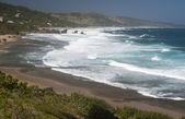 Pobřeží Barbadosu ostrov, Karibik — Stock fotografie