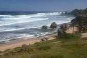 Stranden i barbados island, västindien — Stockfoto