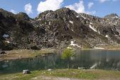 Cornisello Lake, Brenta group, near Madonna of Campiglio — Stock Photo