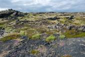 Lava field, Reykjanes peninsula — Stock Photo