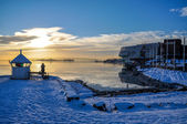 Park and coast near Fram Museum in Oslo in winter — Stock Photo