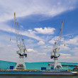 Large container cranes in Port of Antwerp — Stock Photo #80438298