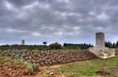 Baby 700 military cemetery — Stock Photo