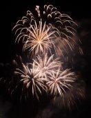 Beautiful firework on the sky at night. — Stock Photo