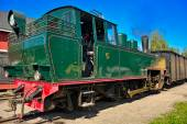 Narrow gauge steam locomotive. — Stock Photo