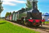 Narrow gauge steam train. — Stock Photo