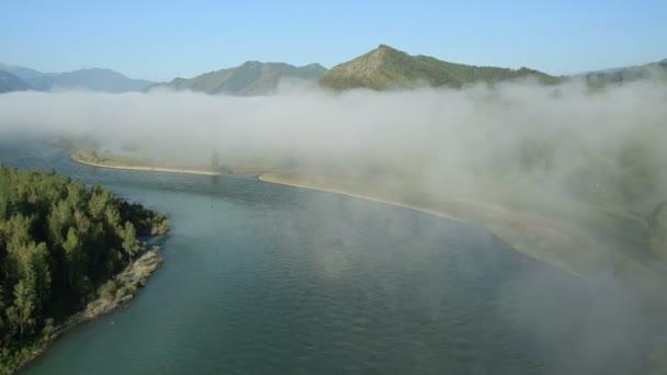 Vista aérea. Volando sobre el río de montaña. Niebla de la mañana. Altai. Siberia. Río de Katun. Zona de Mt. Belukha — Vídeo de stock