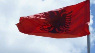 Albanese vlag zwaaien — Stockvideo
