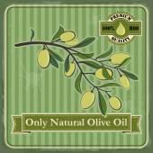 Alte Olivenbäume Plakatgestaltung. — Stockvektor