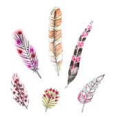 Set of six watercolors feathers — Stock Vector