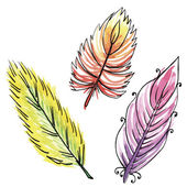 Set of three watercolors feathers — Stock Vector