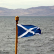 Scottish Flag Blowing In The Breeze — Stock Photo #76962299