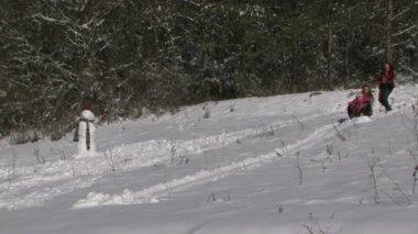 Family Sledding Down The Hills. — Stock Video