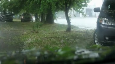 Cars Stopped Under a Tree Waiting When Stop Large Hail. — Stock Video